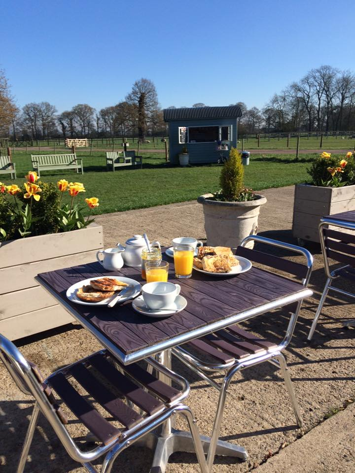 Breakfast outside in the sunshine at Home Farm Beningbrough